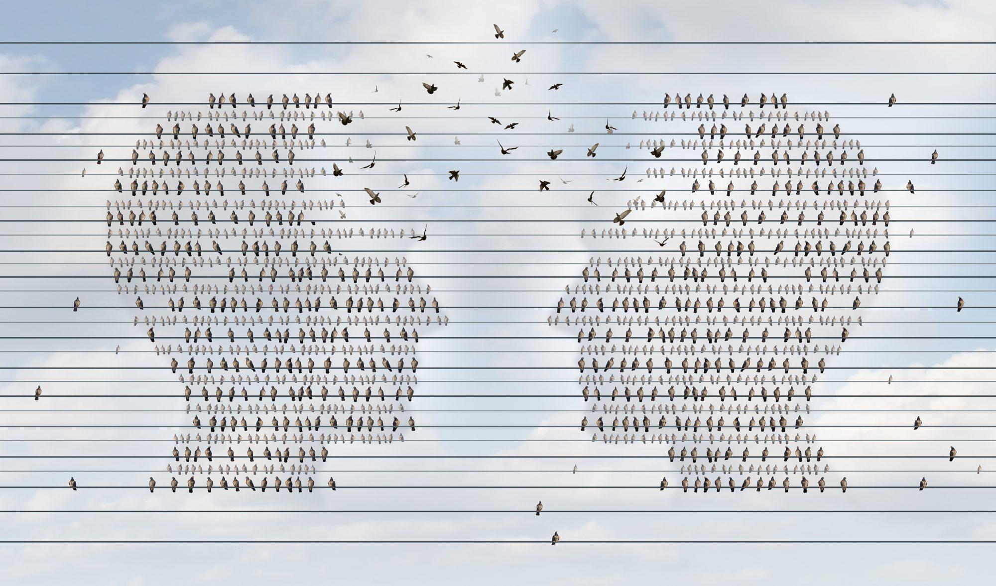 The Subtle Nature of Mind Communication